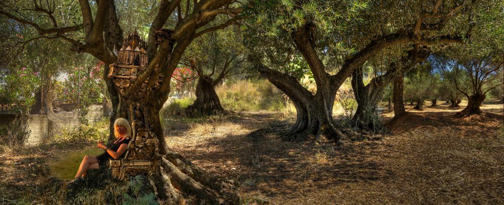 Een-paleis-tussen-de-boomtakken
